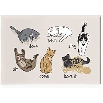Pop Doggie Funny Cats Being Cats Fridge Magnet