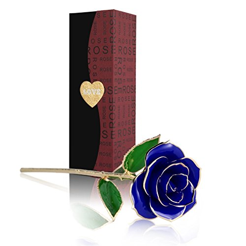 24K Gold Rose Flower, Metal Dipped Roses Artificial Flowers for Valentine Day, Anniversary, Birthday for Lover Mother Girlfriend, 24K Golden Plated Rose in Present Box Red