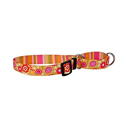 Size Medium 20 Long Made In The USA Autumn Flowers Martingale Control Dog Collar