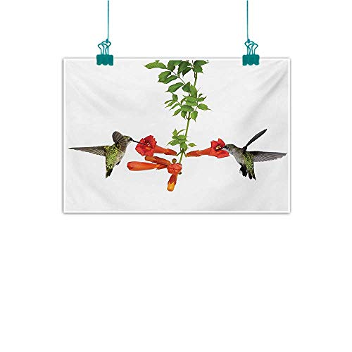 Vineyards Nectar (Simulation Oil Painting Hummingbirds Two Hummingbirds Sipping Nectar from a Trumpet Vine Blossoms Summertime Modern Minimalist Atmosphere W35 xL24 Red Black Green)