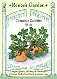 Container Zucchini Astia Seeds
