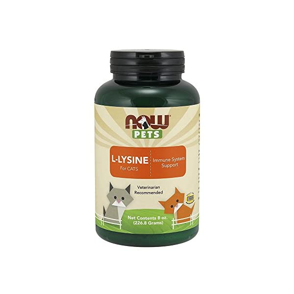 NOW Pet Health, L-Lysine Supplement, Powder, Formulated for Cats, NASC Certified, 8-Ounce 1