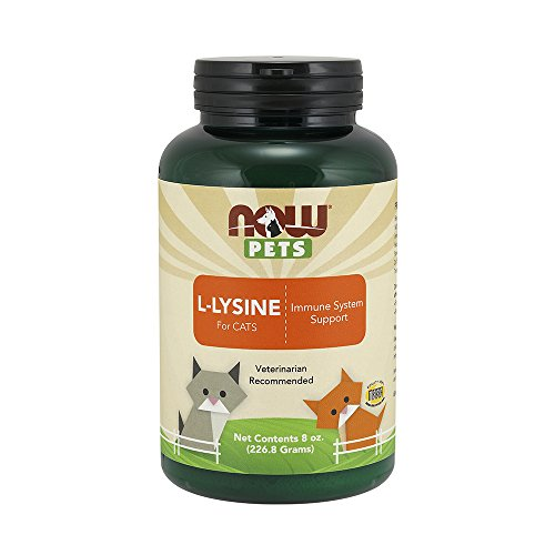 NOW Pet Health, L-Lysine Supplement, Powder, Formulated for Cats, NASC Certified, 8-Ounce