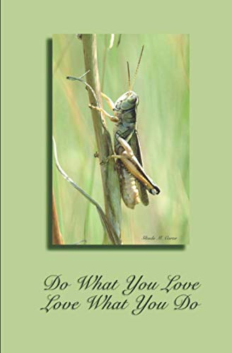 Do What You Love, Love What You Do: 5.25×8 lined 120 page journal. Let your creativity flow onto the pages.