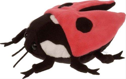Lady Bug with Sound 7