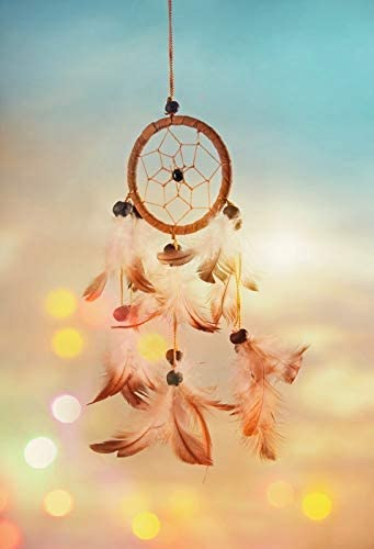 Dream Catcher Backdrop 6x9ft Wedding Polyester Photography Background Blue Feathers Abstract Sunlight Dawn Light Sweet Dreams Romantic Baby Shower Portraits Shoot Studio Photo Prop Decor