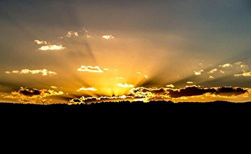Twilight Landscape Lighting in US - 6