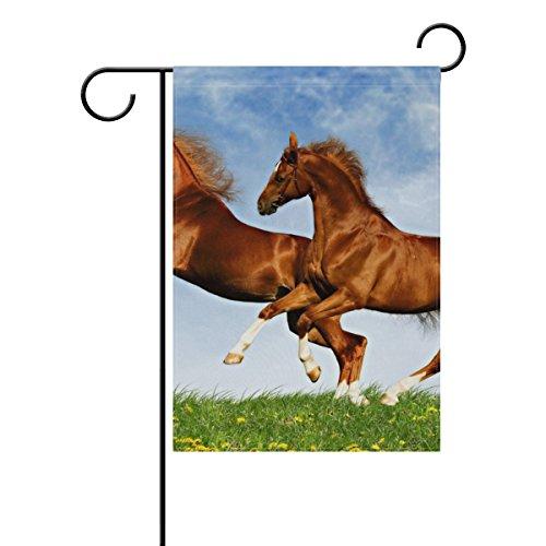 ALIREA Two Horses Frolic On The Plain Polyester Garden Flag Outdoor Flag Home Party Garden Decor, Double Sided, 12