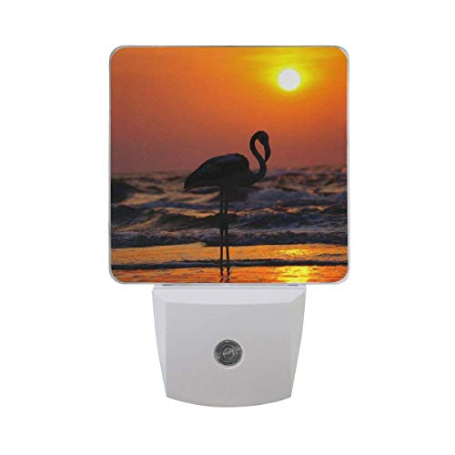 xiaodengyeluwd 2 Pack White Flamingo Silhouette On Sunset Beach Auto Sensor LED Dusk to Dawn Night Light Plug in Indoor for Adults ()