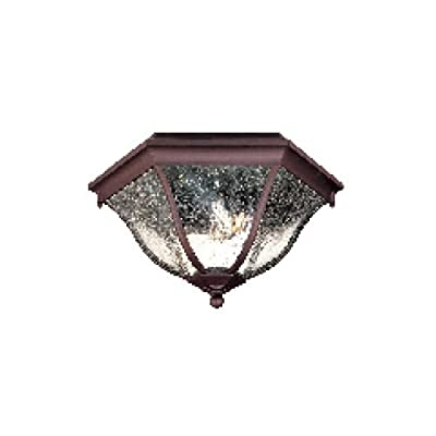 Acclaim 5615ABZ Flush Mount Collection 2-Light Ceiling Mount Outdoor Light Fixture, Architectural Bronze