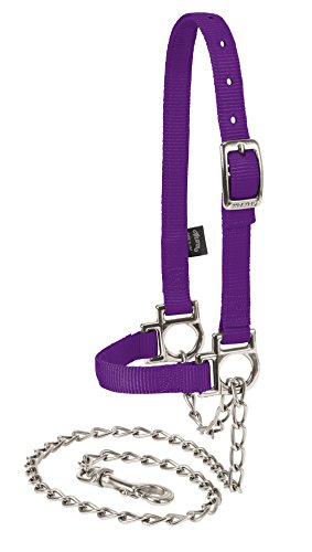 Buy show lead with chain