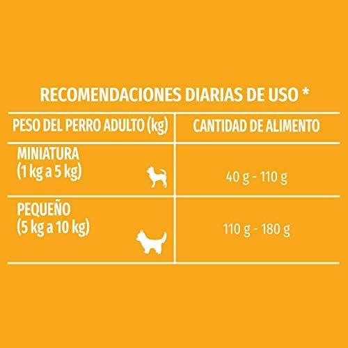 Comida para Perros Adultos, Dog Chow, Razas Minis y Pequeñas, 7.5 kg 7