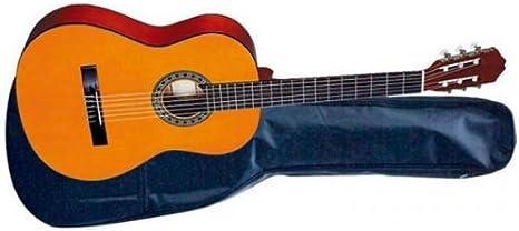 JT-450 - JT-450 - José Torres: Guitarra clásica JT450: Amazon.es ...