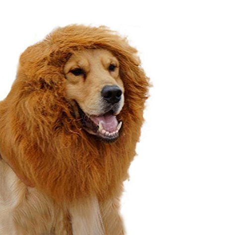 [PetWell Large Dog Festival Party Fancy Dress Up Lion Mane Wig XL] (Dog Lion Costume Large)