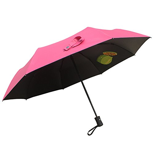 Aguder Travel Umbrella with Lightweight 8 Ribs Automatic Windproof Canopy Compact Auto Open Close, Rose Red