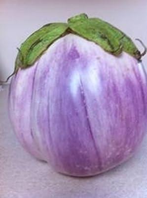 Rosa Bianca Eggplant Seeds- Heirloom- 100+ Seeds