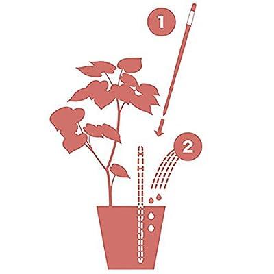 Sustee Aquameter, Plant Moisture Sensor, Set of 2 (Green, Large) : Garden & Outdoor