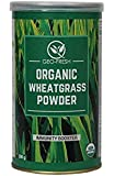 Geo-Fresh Organic Wheat Grass Powder (100g)