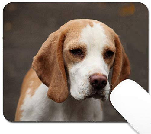 MSD Mouse Pad with Design - Non-Slip Gaming Mouse Pad - Image 23022279 Portrait of a Beautiful Purebred Beagle Close up