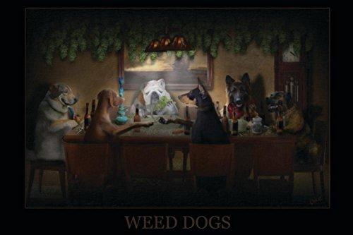 Weed Dogs - Pot Marijuana Poster
