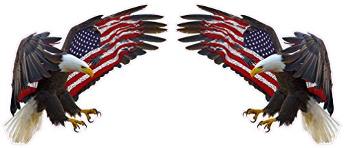(American Eagle American Flag Pair Decal 5