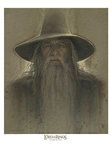 Gandalf - brown antique 12x16