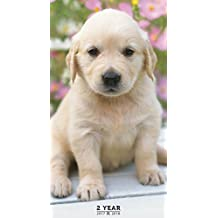 TF PUBLISHING 2017-2018 Puppies 2 Year Pocket Calendar