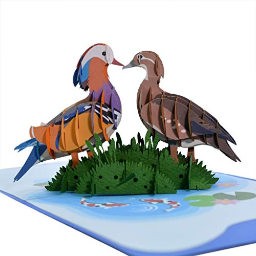 CutePopup Mandarin Duck Couple 3D Popup Card- Symbol of Love and Faith Perfect Gift Idea for Mother day, Father Day, Valentine, Wedding or Anniversary (Couple Bird)
