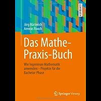 Das Mathe-Praxis-Buch: Wie Ingenieure Mathematik anwenden - Projekte für die Bachelor-Phase (Springer-Lehrbuch)