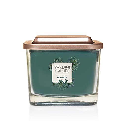 Yankee Candle Company Elevation Collection with Platform Lid, Medium 3-Wick Candle, Frosted Fir