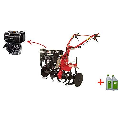 FORT motoazada A Diesel minitigre Motor lombardini 5 HP ...