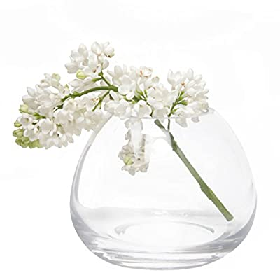 Chive - Set 6 George Shape 3, 3 Inch Wide 3 Inch Tall Unique Clear Glass Flower Vase, Small Elegant Oval Bud Vase, Decorative Floral Vase - CHIVE INC was established over 15 years ago and they currently design and make thousands of glass and ceramic flower vases and other fun bits of home décor! In addition to all these vases they make over 200 plant pots of varying sizes, colors, materials, and textures. I am thrilled to offer on my Amazon page just a small selection of their catalog, including this set of contemporary but classic glass bud vases, George. MODERN MINIMALISTIC FLORAL VASE: Chive offers another outstanding unique and original way to decorate your house with flowers. Simple and classy, the George collection of glass bud vases from Chive offers the charm of a small flower vase for your short flowers with a high quality of handmade glass. SIMPLE ELEGANT DESIGN: Use this assortment of vases to create an elegant grouping down the center of your table. Looks gorgeous as a single flower vase with roses. - vases, kitchen-dining-room-decor, kitchen-dining-room - 41Iu VcIKTL. SS400  -