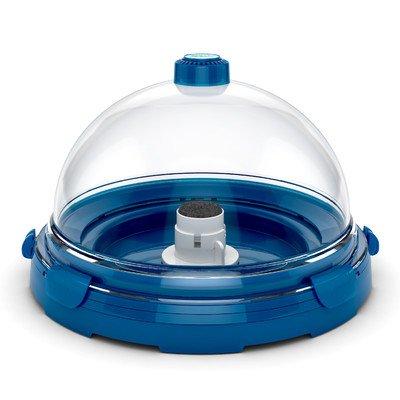 Desktop Aquarium Kit Color: Blue