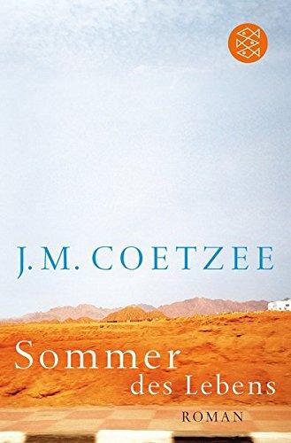 Sommer des Lebens: Roman