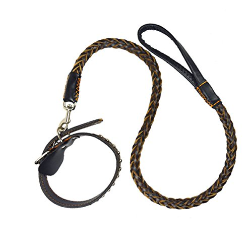 Genuine Cowhide Braided Leather Dog Super Soft Distressed Leather
