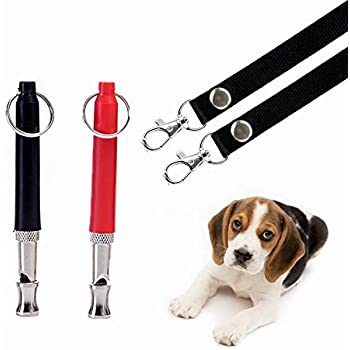 Amazon.com : THINKPRICE 2 Pack Dog Whistle to Stop Barking