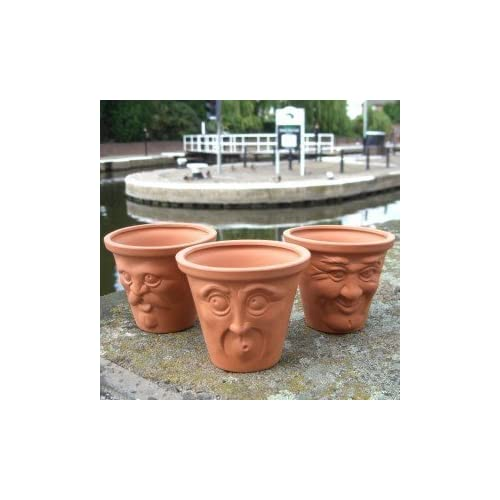 Weston Mill Pottery Terracotta Miniature Face Pots (set Of 3) Character  Plant Pots (