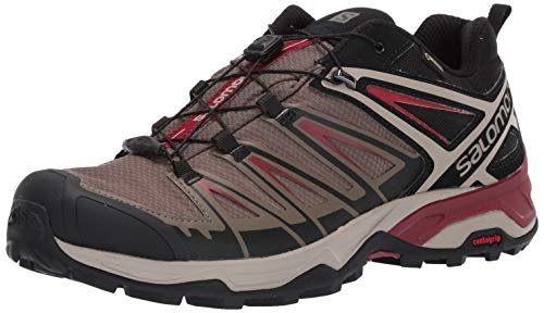 SALOMON Men's X Ultra 3 GTX Hiking Shoe, Bungee Cord/Vintage Kaki/Red Dahlia