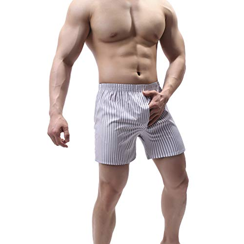 Knickers Men's Home Pants Soft Briefs Underpants Shorts Sexy Underwear Gray