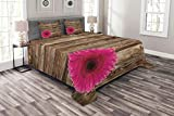 quilted picture board - Lunarable Rustic Coverlet Set Queen Size, Hot Giant Pink Flower Petals on The Wooden Rustic Board Background Artisan Picture Print, Decorative Quilted 3 Piece Bedspread Set with 2 Pillow Shams, Brown