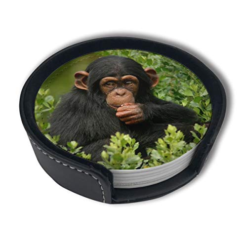 HBLSHISHUAIGE Cute Monkey Chimpanzee Coasters with Holder Set,Round Mugs and Cups Mat Pad for Drinks,Suitable for Home and Kitchen(6PCS)
