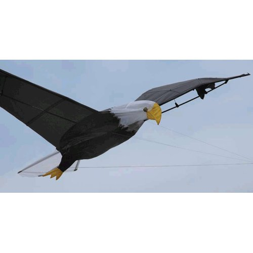 Giant Eagle Show Kite by Premier Kites