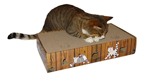 ENVIRONMENTALLY-FRIENDLY-CAT-SCRATCHER-ACTIVITY-TOY-including-CATNIP-and-TOYS