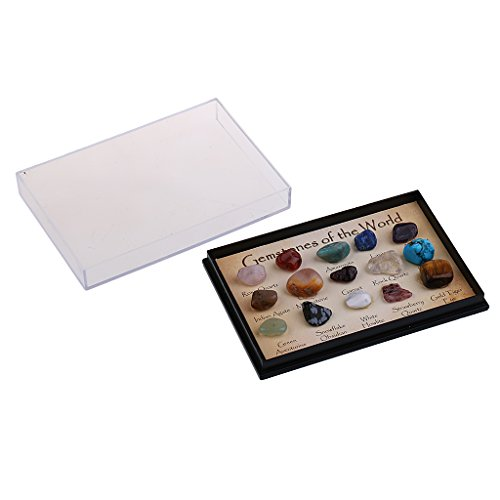 mineral specimen display case - 9