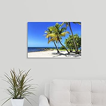 CANVAS ON DEMAND 2345184_24_24x16_None Philippe Hugonnard Premium Thick-Wrap Canvas Entitled Palms on a White Sand Beach in Key West Wall Art Print 24 x 16