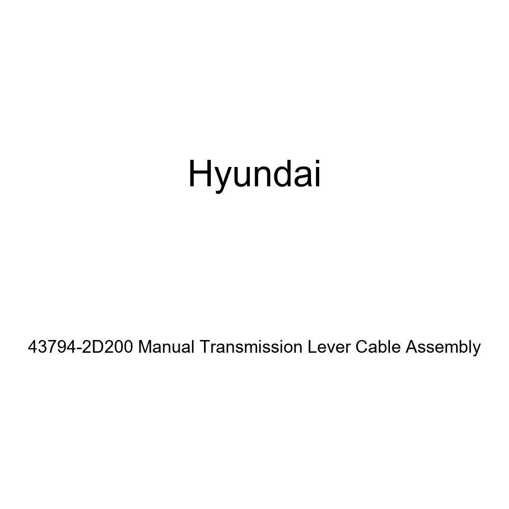 Depo 318-1404R-AS Suzuki XL-7//Grand Vitara Passenger Side Replacement Side Marker Lamp Assembly