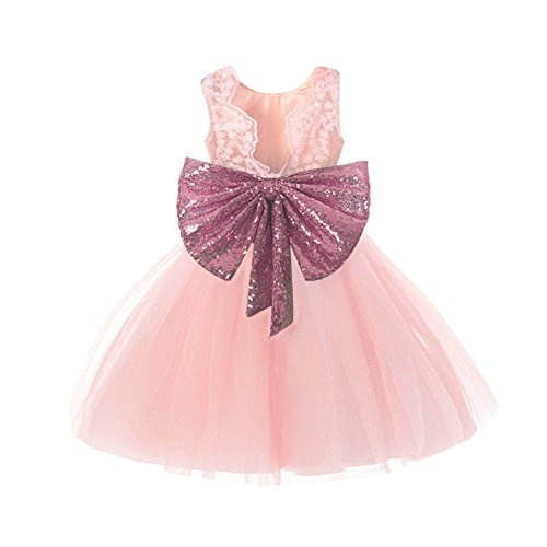 Lace Formal Sequins Flower Girl Dress for Girl Party Pageant Dresses Clothes Clothing Kids Knee Mid A Line Tulle Blush Size 3t (Pink, 110) -