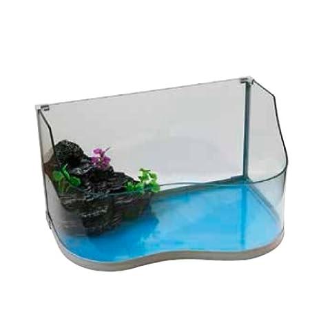 Tortuguera Tuga - Acuario para tortugas de vidrio curvado - Disponible en tres tamaños: Amazon.es: Deportes y aire libre