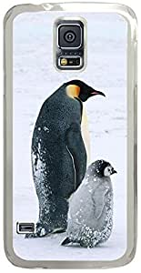 Animals & Birds Arctic-Penguins-Life Cases for Samsung Galaxy S5 I9600 with Transparent Skin