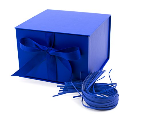 Hallmark Large Gift Box with Fill (Navy Blue)